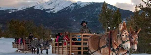 Summit Peaks Lodge - Activities
